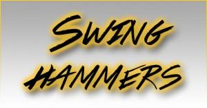 DynaHog® Swing Hammers copy